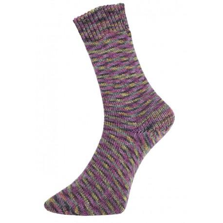 Pro Lana Golden Socks Mouline 2 - 410