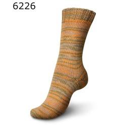 Regia Vibrant Color - 6226 Karoo - 6 draads