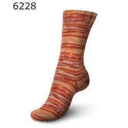 Regia Vibrant Color - 6228 Namib - 6 draads