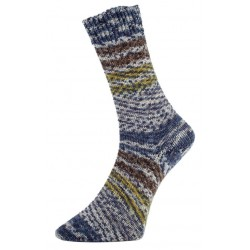 Pro Lana Golden Socks - Surprise Glitzer - 541